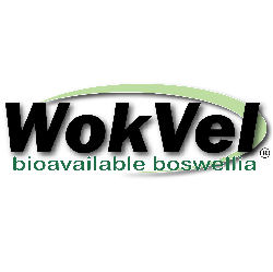 images/glproducts_products/Wokvel_Logo_AI.png