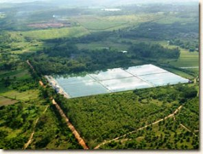 images/glproducts_products/spirulina-farm.jpg